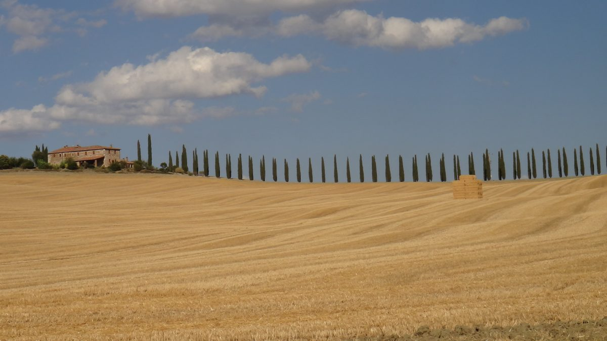 Val d'orcia - Pauline&Olivier