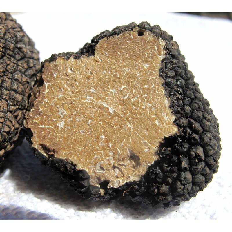 truffe noire - Pauline&Olivier