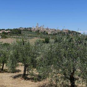 San Gimignano - Pauline&Olivier
