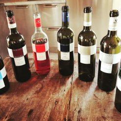 Vins italiens : Rouge, Blanc, Pétillant, Rosé
